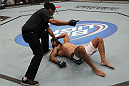 TORONTO, ON - DECEMBER 10:  (L-R) Referee Herb Dean calls for a doctor after Antonio Rodrigo Nogueira suffered a separated shoulder from an arm lock against Frank Mir during the UFC 140 event at Air Canada Centre on December 10, 2011 in Toronto, Ontario, Canada.  (Photo by Nick Laham/Zuffa LLC/Zuffa LLC via Getty Images)