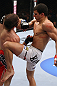 RIO DE JANEIRO, BRAZIL - JANUARY 14:  Felipe Arantes knees Antonio Carvalho in a featherweight bout during UFC 142 at HSBC Arena on January 14, 2012 in Rio de Janeiro, Brazil.  (Photo by Josh Hedges/Zuffa LLC/Zuffa LLC via Getty Images)