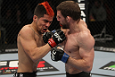 NASHVILLE, TN - JANUARY 20:  (R-L) Nick Denis punches Joseph Sandoval during the UFC on FX event at Bridgestone Arena on January 20, 2012 in Nashville, Tennessee.  (Photo by Josh Hedges/Zuffa LLC/Zuffa LLC via Getty Images)