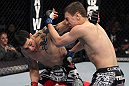 NASHVILLE, TN - JANUARY 20:  (L-R) Daniel Pineda punches Pat Schilling during the UFC on FX event at Bridgestone Arena on January 20, 2012 in Nashville, Tennessee.  (Photo by Josh Hedges/Zuffa LLC/Zuffa LLC via Getty Images)
