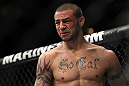 CHICAGO, IL - JANUARY 28:  Cub Swanson reacts after his knockout victory over George Roop during the UFC on FOX event at United Center on January 28, 2012 in Chicago, Illinois.  (Photo by Josh Hedges/Zuffa LLC/Zuffa LLC via Getty Images) *** Local Caption *** Cub Swanson