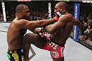 CHICAGO, IL - JANUARY 28:  (R-L) Phil Davis devlivers a knee strike against Rashad Evans during the UFC on FOX event at United Center on January 28, 2012 in Chicago, Illinois.  (Photo by Nick Laham/Zuffa LLC/Zuffa LLC via Getty Images) *** Local Caption *** Rashad Evans; Phil Davis
