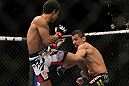 LAS VEGAS, NV - FEBRUARY 04:  Alex Caceres (left) kicks Edwin Figueroa during the UFC 143 event at Mandalay Bay Events Center on February 4, 2012 in Las Vegas, Nevada.  (Photo by Josh Hedges/Zuffa LLC/Zuffa LLC via Getty Images) *** Local Caption *** Alex Caceres; Edwin Figueroa