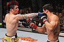 LAS VEGAS, NV - FEBRUARY 04:  Scott Jorgensen (left) punches Renan Barao during the UFC 143 event at Mandalay Bay Events Center on February 4, 2012 in Las Vegas, Nevada.  (Photo by Nick Laham/Zuffa LLC/Zuffa LLC via Getty Images) *** Local Caption *** Scott Jorgensen; Renan Barao