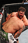 LAS VEGAS, NV - FEBRUARY 04:  Roy Nelson attempts to submit Fabricio Werdum during the UFC 143 event at Mandalay Bay Events Center on February 4, 2012 in Las Vegas, Nevada.  (Photo by Nick Laham/Zuffa LLC/Zuffa LLC via Getty Images) *** Local Caption *** Roy Nelson