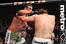 LAS VEGAS, NV - FEBRUARY 04:  Fabricio Werdum (left) punches Roy Nelson during the UFC 143 event at Mandalay Bay Events Center on February 4, 2012 in Las Vegas, Nevada.  (Photo by Nick Laham/Zuffa LLC/Zuffa LLC via Getty Images) *** Local Caption *** Fabricio Werdum; Roy Nelson