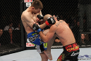 OMAHA, NE - FEBRUARY 15:  (L-R) Tim Means delivers a knee strike against Bernardo Magalhaes during the UFC on FUEL TV event at Omaha Civic Auditorium on February 15, 2012 in Omaha, Nebraska.  (Photo by Josh Hedges/Zuffa LLC/Zuffa LLC via Getty Images) *** Local Caption *** Tim Means; Bernardo Magalhaes