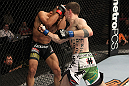 OMAHA, NE - FEBRUARY 15:  (R-L) John Albert punches Ivan Menjivar during the UFC on FUEL TV event at Omaha Civic Auditorium on February 15, 2012 in Omaha, Nebraska.  (Photo by Josh Hedges/Zuffa LLC/Zuffa LLC via Getty Images) *** Local Caption *** Ivan Menjivar; John Albert