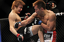 SAITAMA, JAPAN - FEBRUARY 26:  (L-R) Takanori Gomi delivers a knee strike against Eiji Mitsuoka during the UFC 144 event at Saitama Super Arena on February 26, 2012 in Saitama, Japan.  (Photo by Josh Hedges/Zuffa LLC/Zuffa LLC via Getty Images) *** Local Caption *** Takanori Gomi; Eiji Mitsuoka
