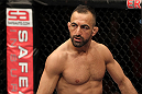 STOCKHOLM, SWEDEN - APRIL 14:  Reza Madadi of Sweden stands in the Octagon before his bout against Yoislandy Izquierdo at the UFC on Fuel TV event at Ericsson Globe on April 14, 2012 in Stockholm, Sweden.  (Photo by Josh Hedges/Zuffa LLC/Zuffa LLC via Getty Images)