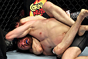EAST RUTHERFORD, NJ - MAY 05:  Roland Delorme chokes out Nick Denis during thier Bantamweight bout at Izod Center on May 5, 2012 in East Rutherford, New Jersey.  (Photo by Josh Hedges/Zuffa LLC/Zuffa LLC via Getty Images)