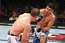 EAST RUTHERFORD, NJ - MAY 05:  Danny Castillo (R) and John Cholish (L) fights during thier Lightweight bout at Izod Center on May 5, 2012 in East Rutherford, New Jersey.  (Photo by Josh Hedges/Zuffa LLC/Zuffa LLC via Getty Images)