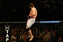 LAS VEGAS, NV - MAY 26:  Roy Nelson sits atop the Octagon after his knockout victory over Dave Herman during a heavyweight bout at UFC 146 at MGM Grand Garden Arena on May 26, 2012 in Las Vegas, Nevada.  (Photo by Donald Miralle/Zuffa LLC/Zuffa LLC via Getty Images)
