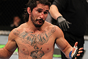 SUNRISE, FL - JUNE 08:   Ian McCall reacts after delivering an accidental low blow against Demetrious Johnson in a Flyweight bout during the UFC on FX 3 event at Bank Atlantic Center on June 8, 2012 in Sunrise, Florida.  (Photo by Josh Hedges/Zuffa LLC/Zuffa LLC via Getty Images)