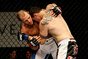 ATLANTIC CITY, NJ - JUNE 22:  Nick Cantone (L) grapples against the fence against Chris Camozzi (R) in a middleweight bout during UFC on FX 4 at Revel Casino on June 22, 2012 in Atlantic City, New Jersey.  (Photo by Nick Laham/Zuffa LLC/Zuffa LLC)