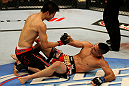 ATLANTIC CITY, NJ - JUNE 22: Hatsu Hioki (L) gives a hand to Ricardo Lamas (R) after the third round of their featherweight bout during UFC on FX 4 at Revel Casino on June 22, 2012 in Atlantic City, New Jersey.  (Photo by Nick Laham/Zuffa LLC/Zuffa LLC)