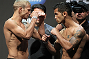 SAN JOSE, CA - JULY 10:   (L-R) Opponents T.J. Dillashaw and Vaughn Lee face off during the UFC on Fuel TV weigh in at HP Pavilion on July 10, 2012 in San Jose, California.  (Photo by Josh Hedges/Zuffa LLC/Zuffa LLC via Getty Images)