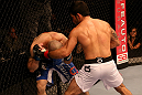 SAN JOSE, CA - JULY 11:   (R-L) Raphael Assuncao punches Issei Tamura during their bantamweight bout at HP Pavilion on July 11, 2012 in San Jose, California.  (Photo by Ezra Shaw/Zuffa LLC/Zuffa LLC via Getty Images)  *** Local Caption *** Issei Tamura; Raphael Assuncao