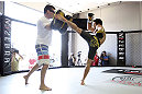 CALGARY, CANADA- JULY 18:  Renan Barao works out for the fans and media during the UFC 149 Open Workouts inside Champion's Creed Gym on July 18, 2012 in Calgary, Alberta, Canada.  (Photo by Jeff Bottari/Zuffa LLC/Zuffa LLC via Getty Images)