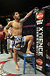CALGARY, CANADA - JULY 21: Daniel Pineda looks to the crowd after being knocked out by Antonio Carvalho during their featherweight bout at UFC 149 inside the Scotiabank Saddledome on July 21, 2012 in Calgary, Alberta, Canada.  (Photo by Nick Laham/Zuffa LLC/Zuffa LLC via Getty Images)