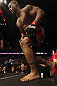 CALGARY, CANADA - JULY 21:  Hector Lombard enters the Octagon prior to facing Tim Boetsch during their middleweight bout at UFC 149 inside the Scotiabank Saddledome on July 21, 2012 in Calgary, Alberta, Canada.  (Photo by Nick Laham/Zuffa LLC/Zuffa LLC via Getty Images)
