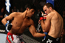 LOS ANGELES, CA - AUGUST 04:  Nam Phan (L) lands a punch on Cole Miller in their featherweight bout during UFC on FOX at Staples Center on August 4, 2012 in Los Angeles, California.  (Photo by Josh Hedges/Zuffa LLC via Getty Images)