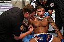 LOS ANGELES, CA - AUGUST 04:  Damarques Johnson is checked out by medical staff after being knocked out in the second round by Mike Swick (not pictured) during the UFC on FOX at Staples Center on August 4, 2012 in Los Angeles, California.  (Photo by Josh Hedges/Zuffa LLC via Getty Images)