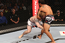 DENVER, CO - AUGUST 11:  (L-R) Dennis Bermudez secures a guillotine choke against Tom Hayden during their featherweight bout at UFC 150 inside Pepsi Center on August 11, 2012 in Denver, Colorado. (Photo by Nick Laham/Zuffa LLC/Zuffa LLC via Getty Images)