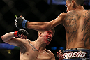 DENVER, CO - AUGUST 11:  (L-R) Justin Lawrence and Max Holloway trade punches during their featherweight bout at UFC 150 inside Pepsi Center on August 11, 2012 in Denver, Colorado. (Photo by Josh Hedges/Zuffa LLC/Zuffa LLC via Getty Images)