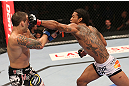 DENVER, CO - AUGUST 11:  (R-L) Benson Henderson punches Frankie Edgar during their lightweight championship bout at UFC 150 inside Pepsi Center on August 11, 2012 in Denver, Colorado. (Photo by Nick Laham/Zuffa LLC/Zuffa LLC via Getty Images)
