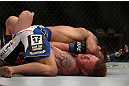 DENVER, CO - AUGUST 11:  Jake Shields (top) lands an elbow to the head of Ed Herman during their middleweight bout at UFC 150 inside Pepsi Center on August 11, 2012 in Denver, Colorado. (Photo by Josh Hedges/Zuffa LLC/Zuffa LLC via Getty Images)
