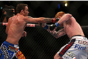 DENVER, CO - AUGUST 11:  (L-R) Jake Shields punches Ed Herman during their middleweight bout at UFC 150 inside Pepsi Center on August 11, 2012 in Denver, Colorado. (Photo by Josh Hedges/Zuffa LLC/Zuffa LLC via Getty Images)