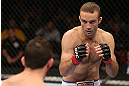 MINNEAPOLIS, MN - OCTOBER 05:  (R-L) Jacob Volkmann squares off with Shane Roller during their lightweight fight at the UFC on FX event at Target Center on October 5, 2012 in Minneapolis, Minnesota.  (Photo by Josh Hedges/Zuffa LLC/Zuffa LLC via Getty Images)