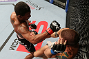 MINNEAPOLIS, MN - OCTOBER 05:  (L-R) Marcus LeVesseur punches Carlo Prater during their lightweight fight at the UFC on FX event at Target Center on October 5, 2012 in Minneapolis, Minnesota.  (Photo by Josh Hedges/Zuffa LLC/Zuffa LLC via Getty Images)