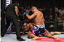 MINNEAPOLIS, MN - OCTOBER 05:  (R-L) Antonio Silva punches Travis Browne during their heavyweight fight at the UFC on FX event at Target Center on October 5, 2012 in Minneapolis, Minnesota.  (Photo by Josh Hedges/Zuffa LLC/Zuffa LLC via Getty Images)