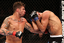 RIO DE JANEIRO, BRAZIL - OCTOBER 13:  (L-R) Cristiano Marcello punches Reza Madadi during their lightweight fight at UFC 153 inside HSBC Arena on October 13, 2012 in Rio de Janeiro, Brazil.  (Photo by Josh Hedges/Zuffa LLC/Zuffa LLC via Getty Images)