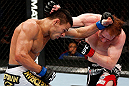 MONTREAL, QC - NOVEMBER 17:  Rafael dos Anjos (L) and Mark Bocek trade punches during their lightweight bout during UFC 154 on November 17, 2012  at the Bell Centre in Montreal, Canada.  (Photo by Josh Hedges/Zuffa LLC/Zuffa LLC via Getty Images)