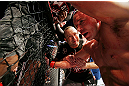 MONTREAL, QC - NOVEMBER 17:  Georges St-Pierre reacts after fighting against Carlos Condit in the welterweight title bout during UFC 154 on November 17, 2012  at the Bell Centre in Montreal, Canada.  (Photo by Josh Hedges/Zuffa LLC/Zuffa LLC via Getty Images)