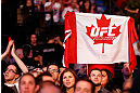 MONTREAL, QC - NOVEMBER 17:  A fan holds up a canadian flag with a UFC logo on it during the fight between Alessio Sakara and Patrick Cote during UFC 154 on November 17, 2012  at the Bell Centre in Montreal, Canada.  (Photo by Josh Hedges/Zuffa LLC/Zuffa LLC via Getty Images)