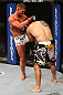 SEATTLE, WA - DECEMBER 08:  (L-R) Daron Cruickshank knees Henry Martinez  during their lightweight bout at the UFC on FOX event on December 8, 2012  at Key Arena in Seattle, Washington.  (Photo by Ezra Shaw/Zuffa LLC/Zuffa LLC via Getty Images) *** Local Caption *** Daron Cruickshank; Henry Martinez