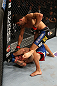 SEATTLE, WA - DECEMBER 08:  Ramsey Nijem (top) punches Joe Proctor (bottom) during their lightweight bout at the UFC on FOX event on December 8, 2012  at Key Arena in Seattle, Washington.  (Photo by Ezra Shaw/Zuffa LLC/Zuffa LLC via Getty Images) *** Local Caption *** Ramsey Nijem; Joe Proctor