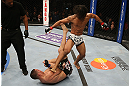 SEATTLE, WA - DECEMBER 08:  Benson Henderson (white shorts) kicks Nate Diaz (bottom) during their lightweight championship bout at the UFC on FOX event on December 8, 2012  at Key Arena in Seattle, Washington.  (Photo by Ezra Shaw/Zuffa LLC/Zuffa LLC via Getty Images) *** Local Caption *** Benson Henderson; Nate Diaz