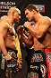 LAS VEGAS, NV - DECEMBER 14:  (L-R) Pat Barry and Shane Del Rosario face off during TUF 16 Finale weigh in on December 14, 2012  at the Joint at the Hard Rock in Las Vegas, Nevada.  (Photo by Jim Kemper/Zuffa LLC/Zuffa LLC via Getty Images)
