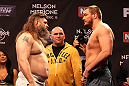 LAS VEGAS, NV - DECEMBER 14:  (L-R) Roy Nelson and Matt Mitrione face off while UFC President Dana White looks on during TUF 16 Finale weigh in on December 14, 2012  at the Joint at the Hard Rock in Las Vegas, Nevada.  (Photo by Jim Kemper/Zuffa LLC/Zuffa LLC via Getty Images)