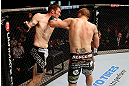 GOLD COAST, AUSTRALIA - DECEMBER 15:  (R-L) Cody Donovan punches Nick Penner during their light heavyweight fight at the UFC on FX event on December 15, 2012  at Gold Coast Convention and Exhibition Centre in Gold Coast, Australia.  (Photo by Josh Hedges/Zuffa LLC/Zuffa LLC via Getty Images)
