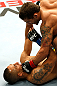 GOLD COAST, AUSTRALIA - DECEMBER 15:  (R-L) Chad Mendes knocks out Yaotzin Meza with punches during their featherweight fight at the UFC on FX event on December 15, 2012  at Gold Coast Convention and Exhibition Centre in Gold Coast, Australia.  (Photo by Josh Hedges/Zuffa LLC/Zuffa LLC via Getty Images)
