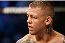 GOLD COAST, AUSTRALIA - DECEMBER 15:  Ross Pearson stands in the Octagon before his lightweight fight against George Sotiropoulos at the UFC on FX event on December 15, 2012  at Gold Coast Convention and Exhibition Centre in Gold Coast, Australia.  (Photo by Josh Hedges/Zuffa LLC/Zuffa LLC via Getty Images)