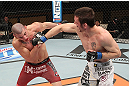 LAS VEGAS, NV - DECEMBER 15:  (R-L) Timothy Elliott punches Jared Papazian during their flyweight fight at the TUF 16 Finale on December 15, 2012  at the Joint at the Hard Rock in Las Vegas, Nevada.  (Photo by Jim Kemper/Zuffa LLC/Zuffa LLC via Getty Images) *** Local Caption ***Jared Papazian; Timothy Elliott