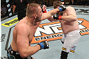 LAS VEGAS, NV - DECEMBER 15:  (L-R) Matt Mitrione punches Roy Nelson during their heavyweight fight at the TUF 16 Finale on December 15, 2012  at the Joint at the Hard Rock in Las Vegas, Nevada.  (Photo by Jim Kemper/Zuffa LLC/Zuffa LLC via Getty Images) *** Local Caption *** Roy Nelson; Matt Mitrione