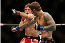 LAS VEGAS, NV - DECEMBER 29:  (R-L) Eddie Wineland and Brad Pickett exchange punches during their bantamweight fight at UFC 155 on December 29, 2012 at MGM Grand Garden Arena in Las Vegas, Nevada. (Photo by Josh Hedges/Zuffa LLC/Zuffa LLC via Getty Images) *** Local Caption *** Brad Pickett; Eddie Wineland